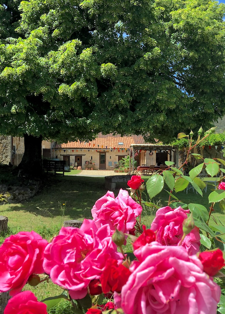 Vegetarian and Vegan Accommodation, Charente, France